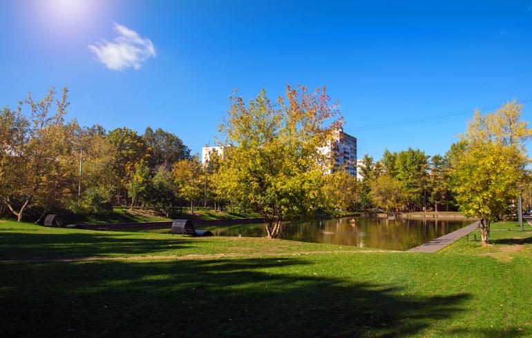 Гончаровский парк в Москве