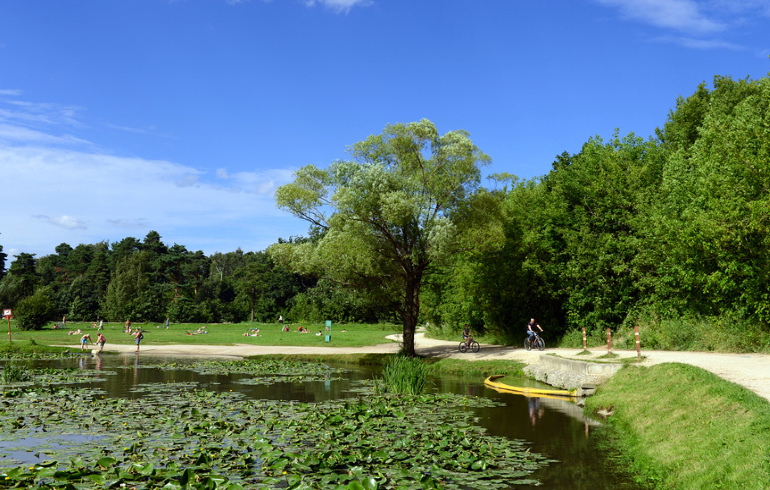 Парк «Кузьминки-Люблино» в Москве