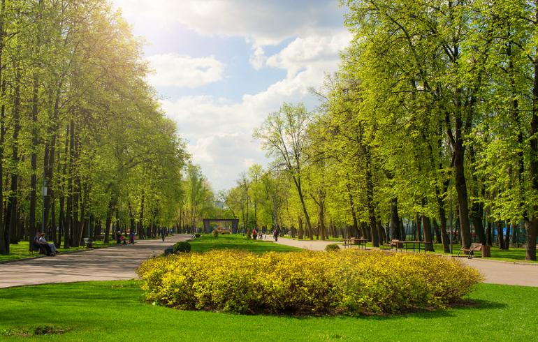 Перовский парк в Москве