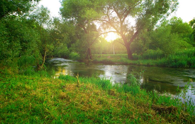 Парк «Бабушкинский» в Москве