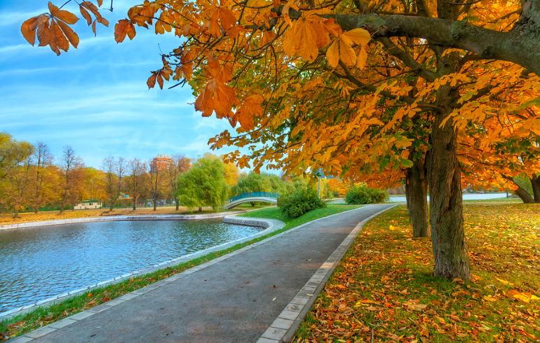 Парк Дружбы в Москве